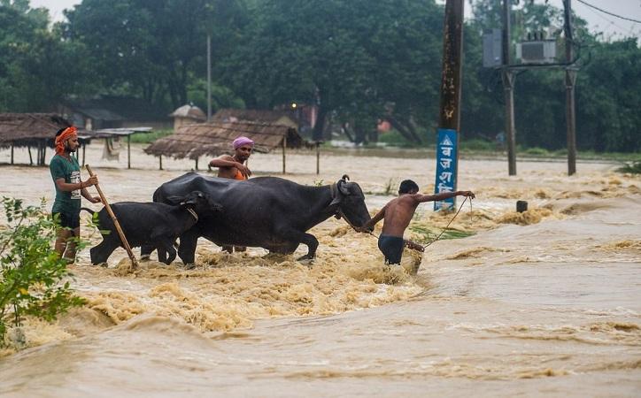 El desastre que es ignorado; inundaciones en India, Bangladesh y Nepal han dejado más de mil muertos