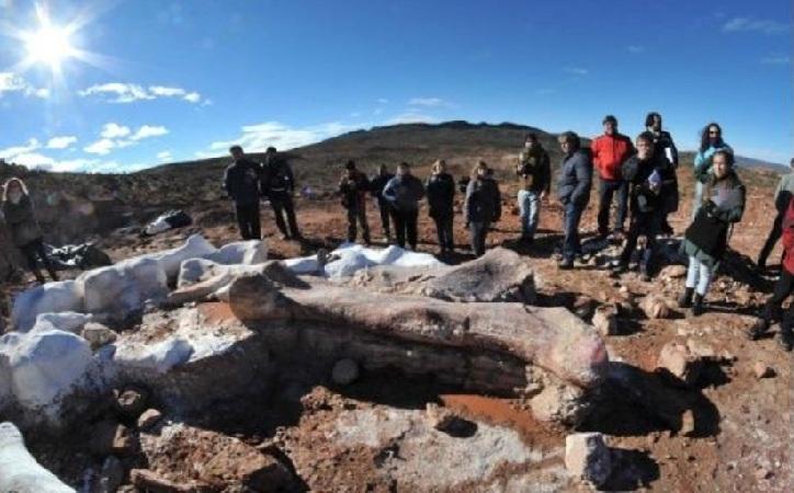 Hallan en Argentina al dinosaurio gigante más antiguo del mundo