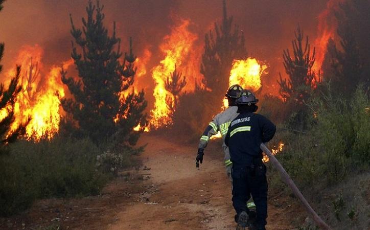 Van más de 5 mil incendios en México; revertir daño requerirá mínimo 10 años