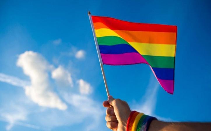 18 Marcha de la Diversidad Sexual del Estado de Zacatecas, en formato digital