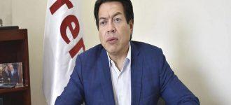 Delgado quiere encuestas para renovar dirigencias estatales de Morena